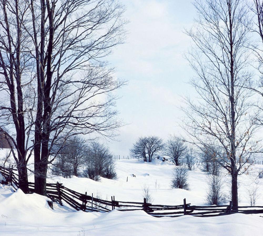 Wintertime Tips