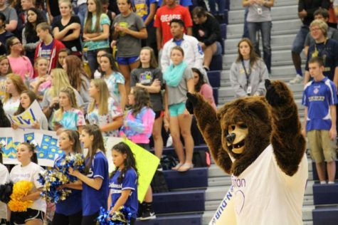 The grizzly bear riling up the crowd for the football game.